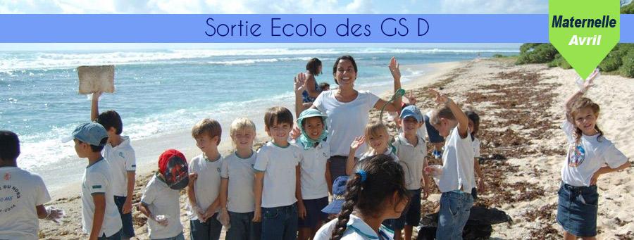 actu-03-ecolo-GSD