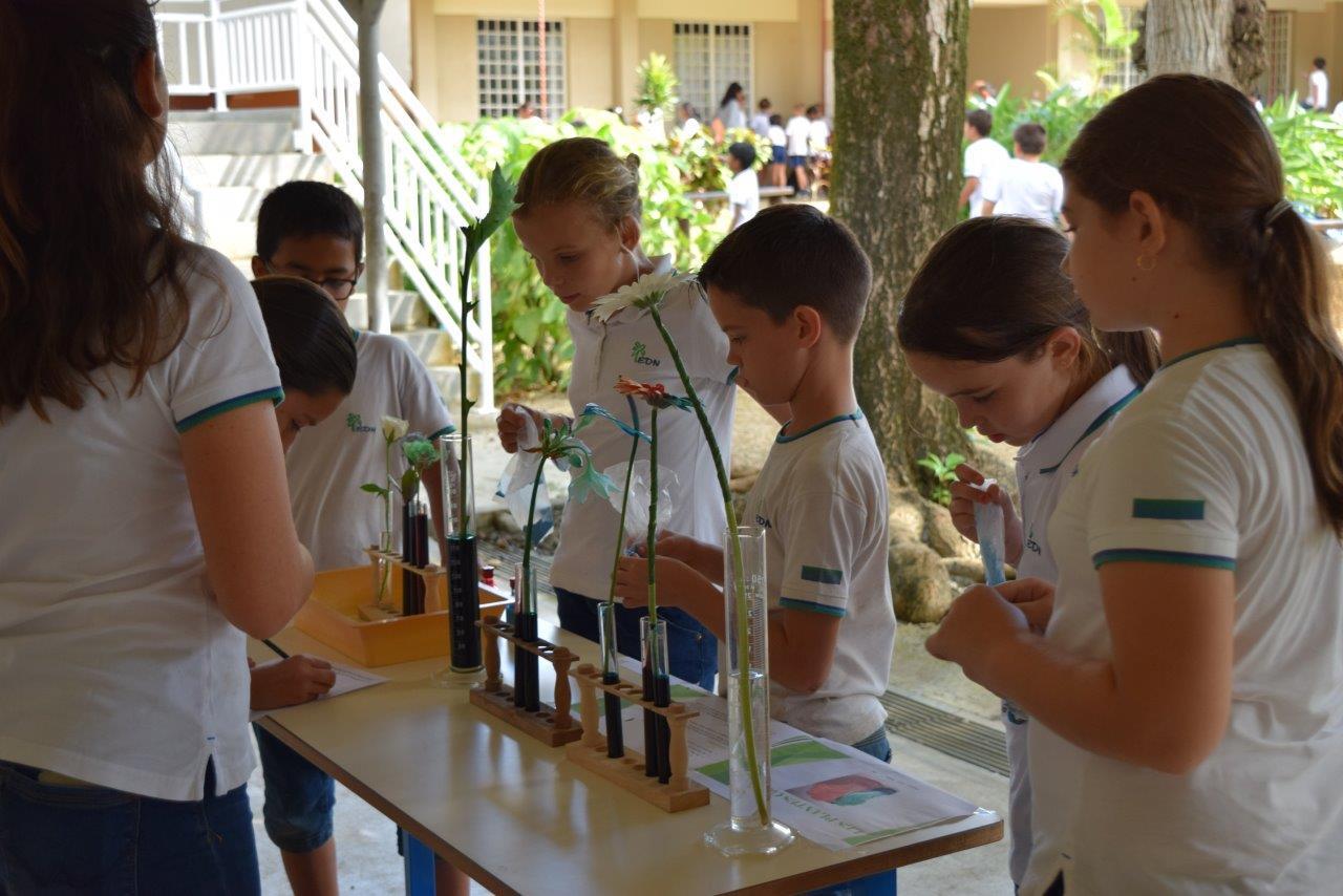 207-06-village sciences (6)