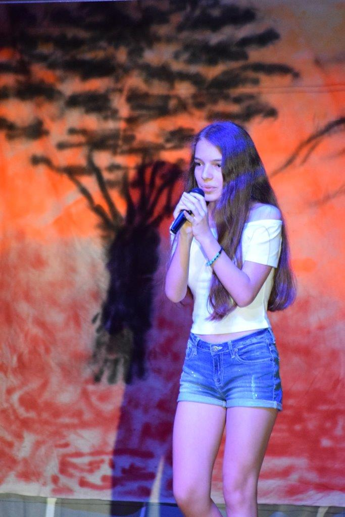 2017-06-fete-musique-college-spectacle (41)