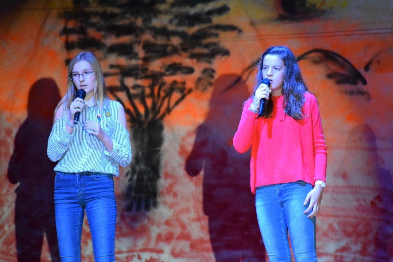 2017-06-fete-musique-college-spectacle (45)