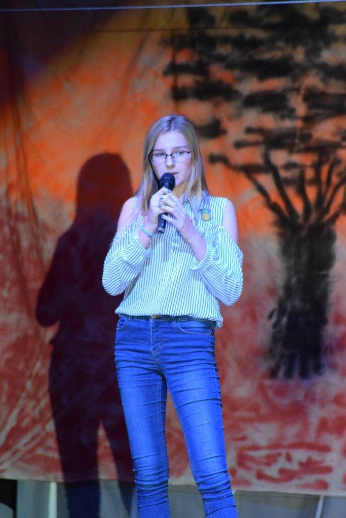 2017-06-fete-musique-college-spectacle (47)