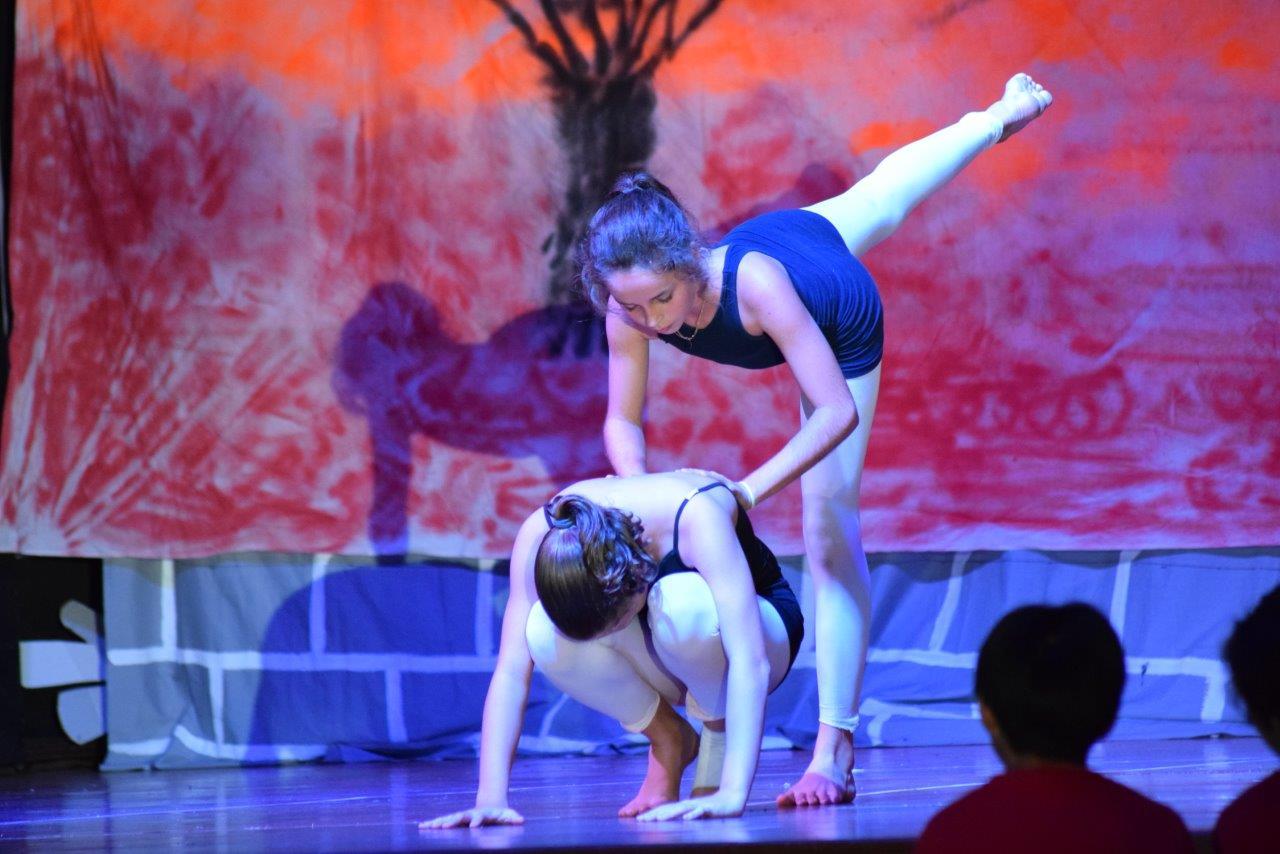 2017-06-fete-musique-college-spectacle (75)