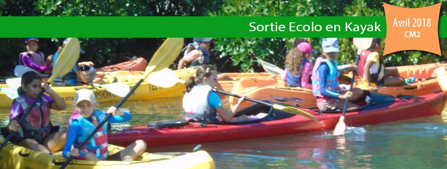 http://www.ecoledunord.net/sortie-ecolo-kayak-cm2/