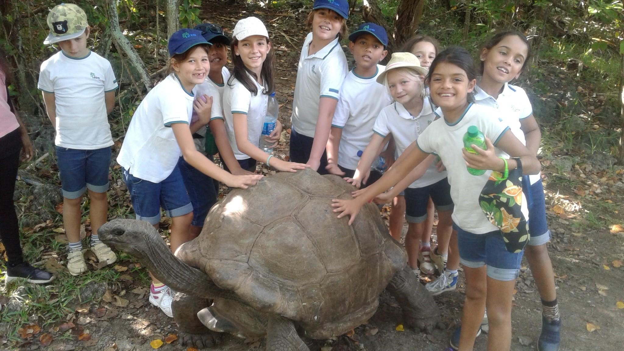 18-06-classe-decouverte-ce2-mardi-tortue (2)