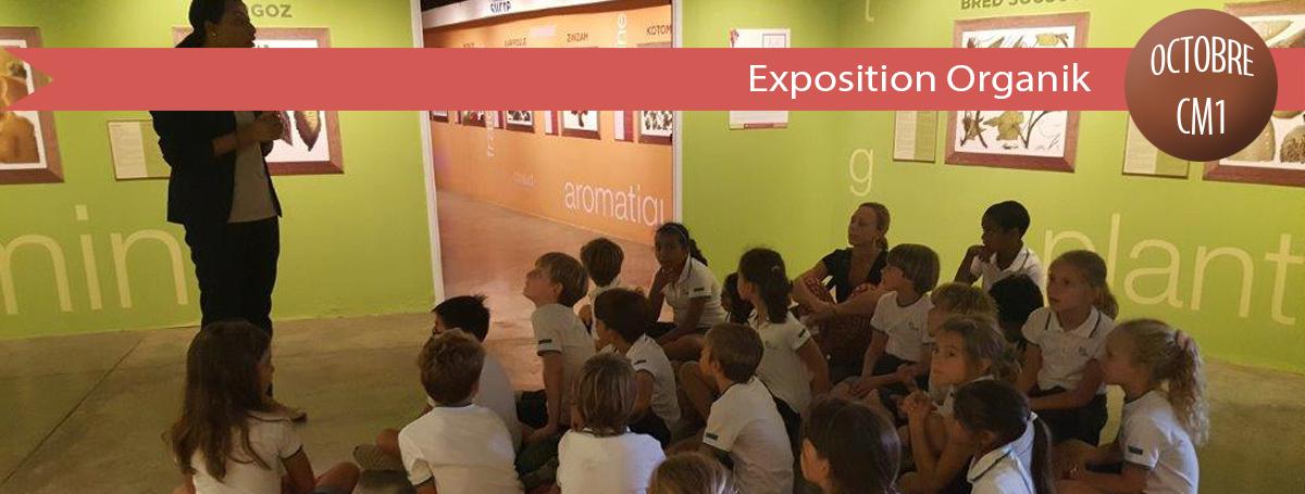 diaporama-actu-2018-2019-exposition Organik