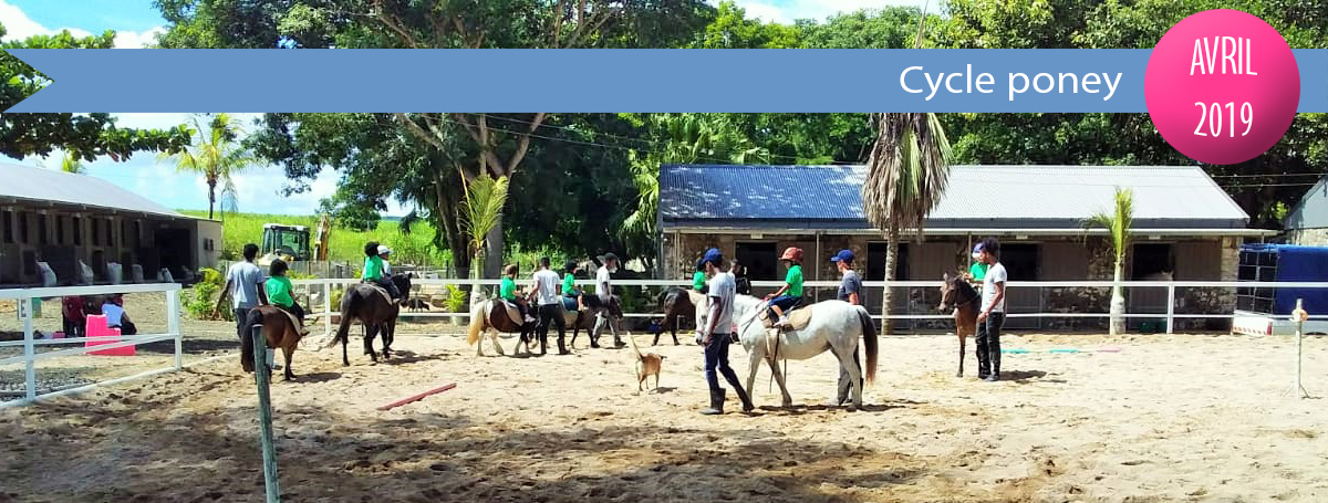 diaporama-actu-2018-2019-cycle poney