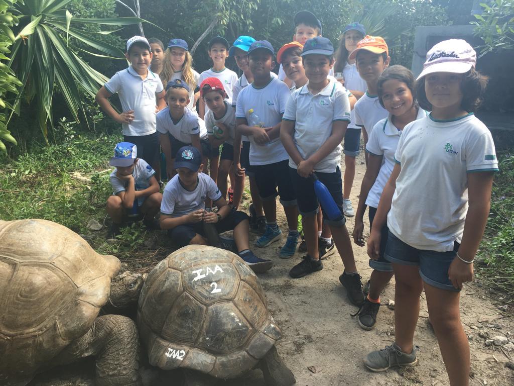 2019-classe-dd-tortue-pigeon (5)