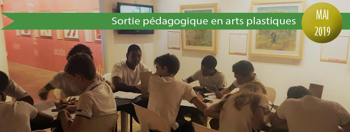 diaporama-actu-2018-2019-SORTIE-PEDA-ARTS-PLASTQIUES