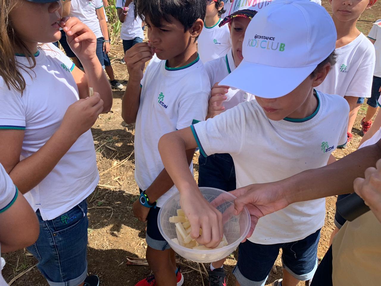 2019-27-11 classe decouverte CM1B aventure du sucre (2)