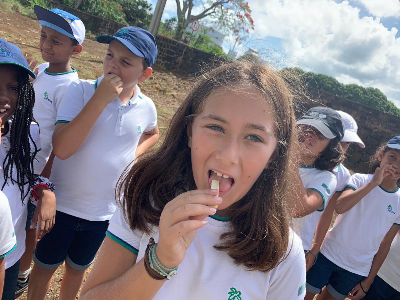 2019-27-11 classe decouverte CM1B aventure du sucre (4)