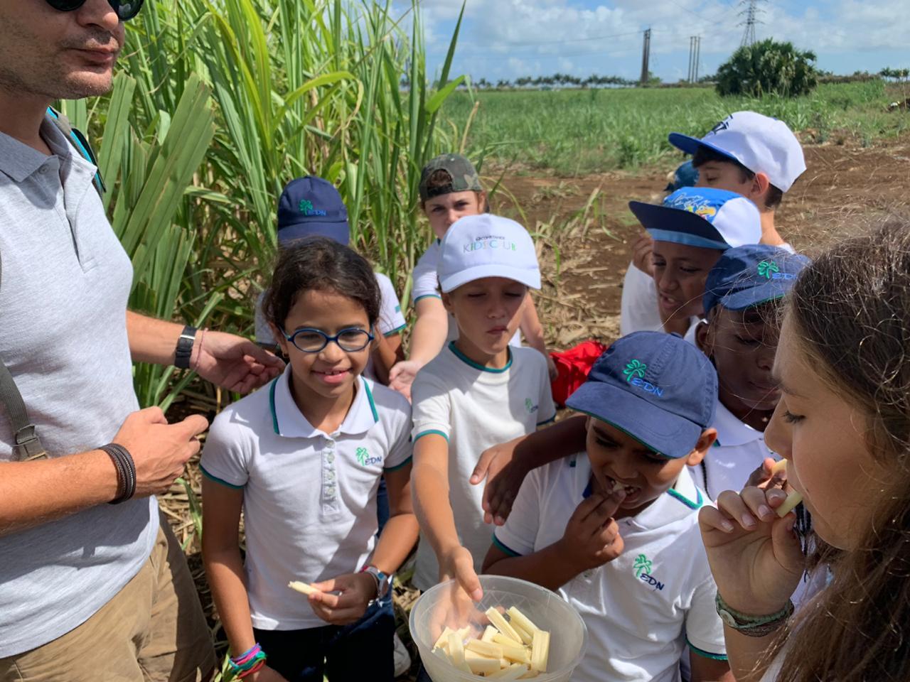 2019-27-11 classe decouverte CM1B aventure du sucre (5)