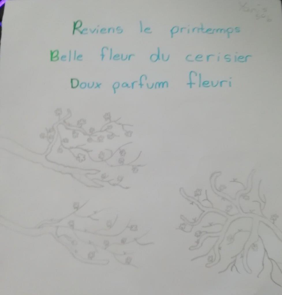 2020-04-haiku-ce (55)