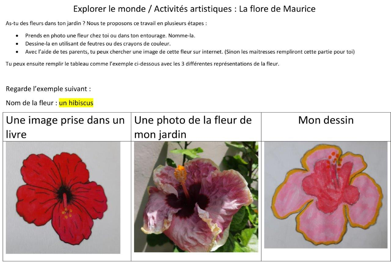 2021-04-explore-fruits-fleur (3)